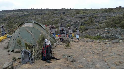 Diary of Kilimanjaro