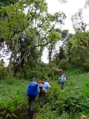Diary of Kilimanjaro climb
