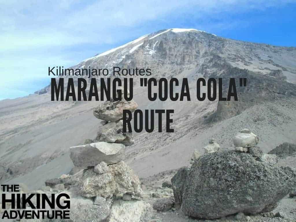 landscape of KIlimanjaro's marangu route