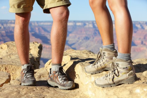 Hiking shoes or hiking boots