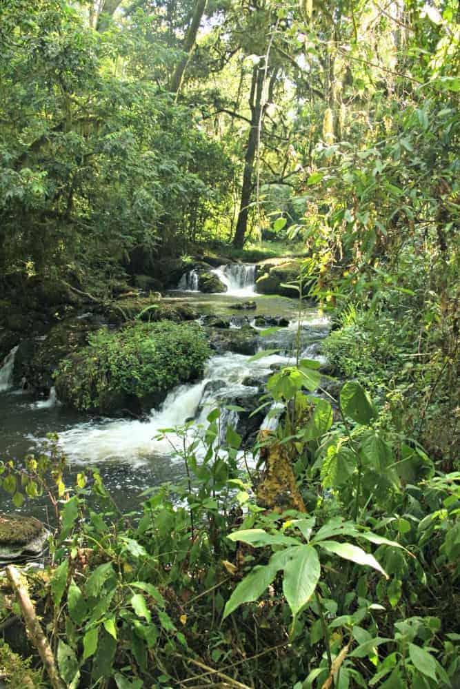 Ragati River, Kenya