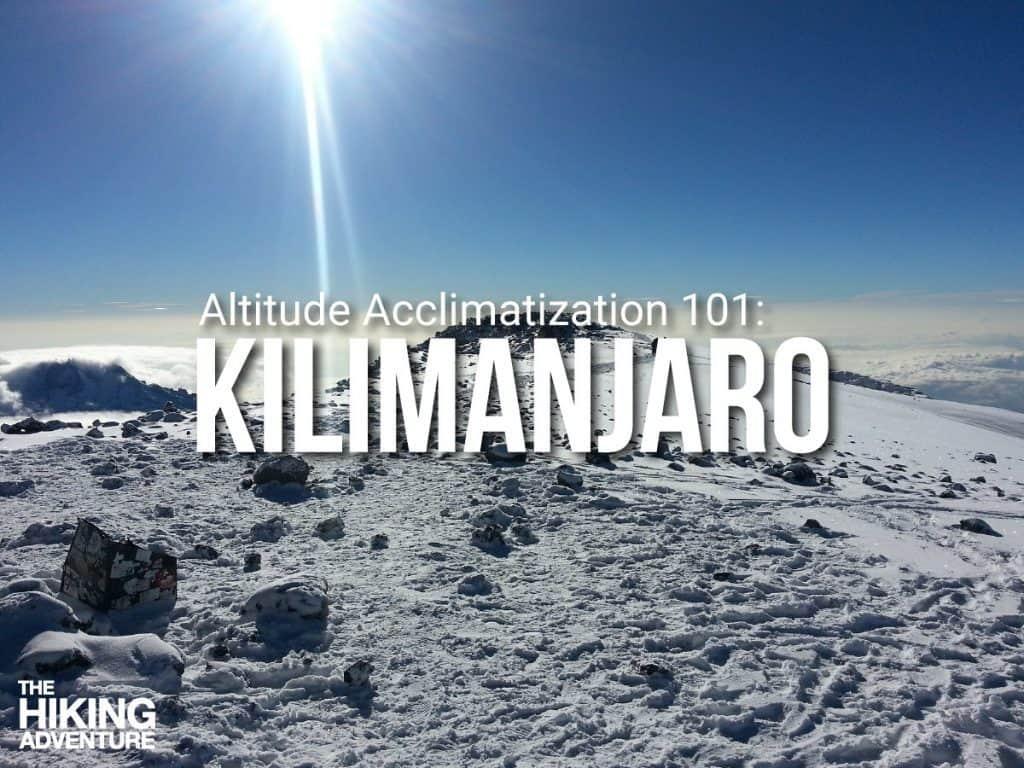 Acclimatization to Kilimanjaro's altitude