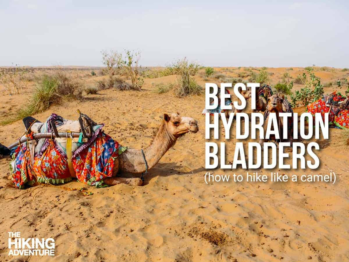 best hydration bladder for hiking be like a camel!