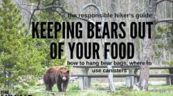Bears! How to Keep Bears out of your Food