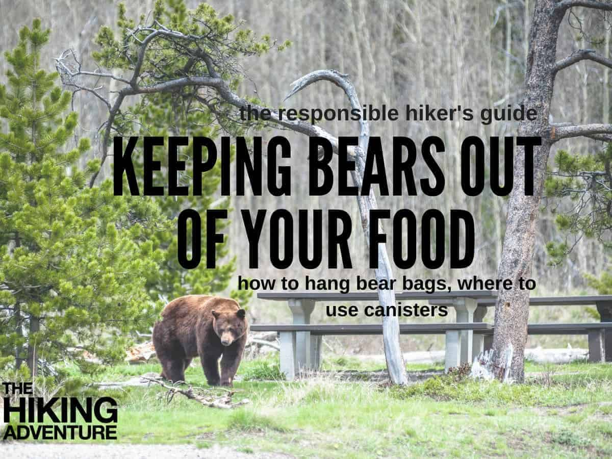 best bear bags