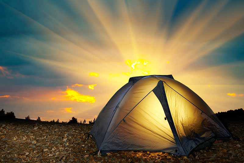 A tent pitched in the wilderness illuminated by a sunset, with light seeping into the compartment and through the clouds. The background is trees in silhouette.