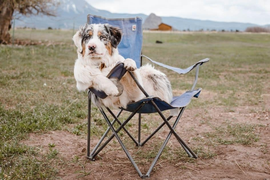 camping chair comfort rating